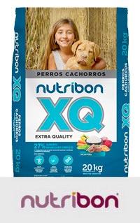 Nutribon Perros Cachorros